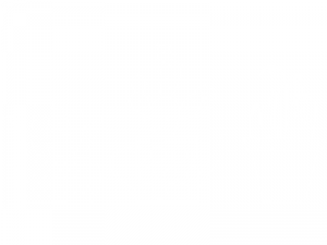 Sticker Pack Cactus Arrosoir