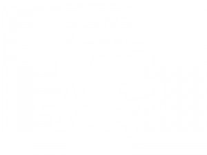 Sticker Famille Hibou