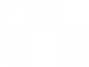 Sticker Dinosaure Personnalisé
