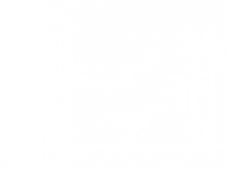 Sticker Pack Dinosaures Palmier