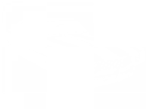Sticker Voiture Mustang 2