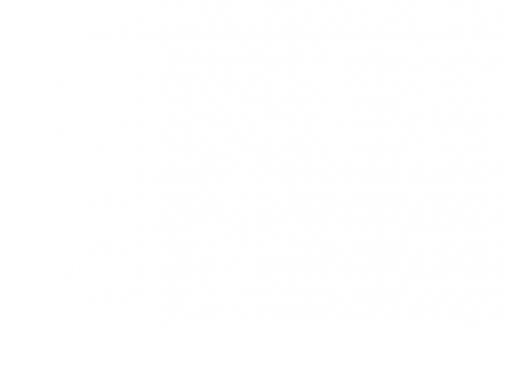 Sticker Cage oiseaux