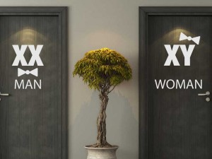 Sticker WC Man & Women Chromosomes