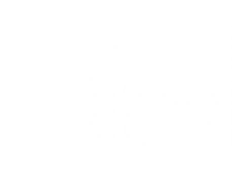Sticker Arbre Oiseaux 5