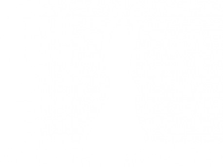 Sticker Danseuse Orientale