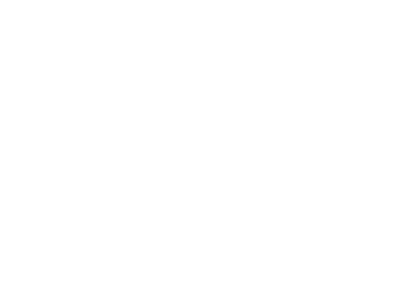 sticker renne geometrique