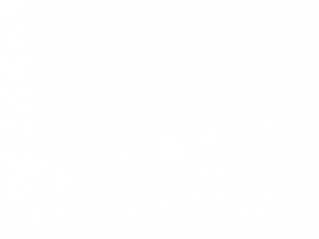 Sticker Fleurs des Champs